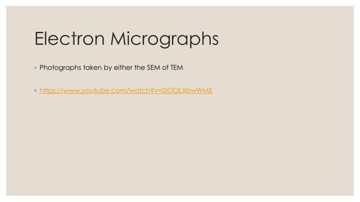 Electron Micrographs