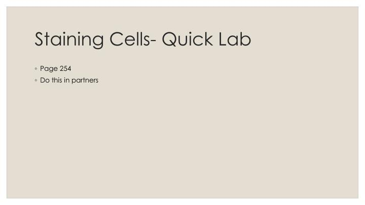 Staining cells quick lab