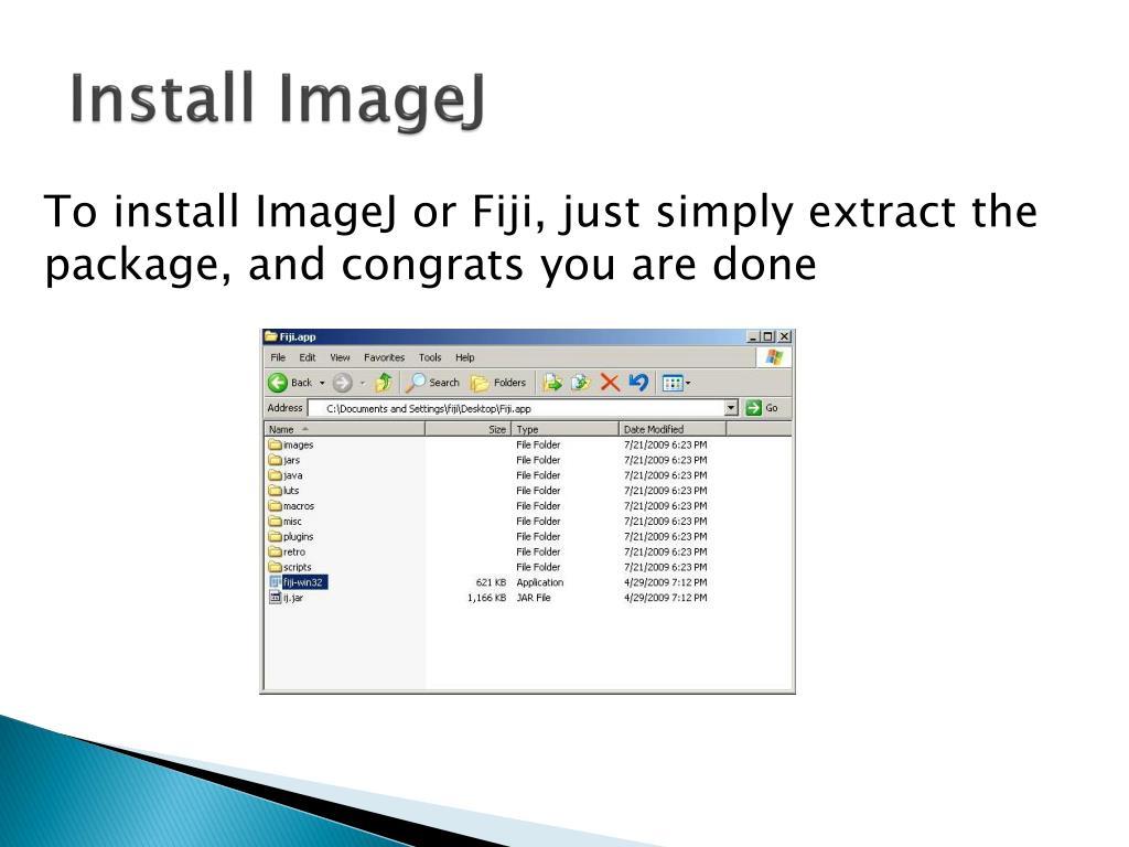 PPT - ImageJ Tutorial PowerPoint Presentation - ID:2520592
