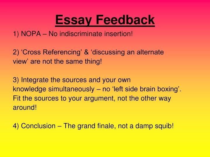 Essay feedback