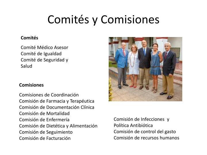 Comités y Comisiones