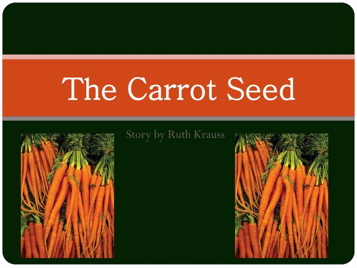 the carrot seed n.