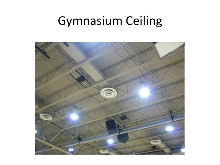 Gymnasium Ceiling
