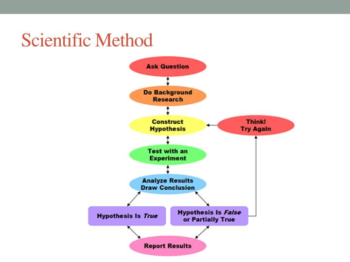 introduction to the scientific method Key points in the scientific method, observations lead to questions that require answers in the scientific method, the hypothesis is a testable statement proposed.