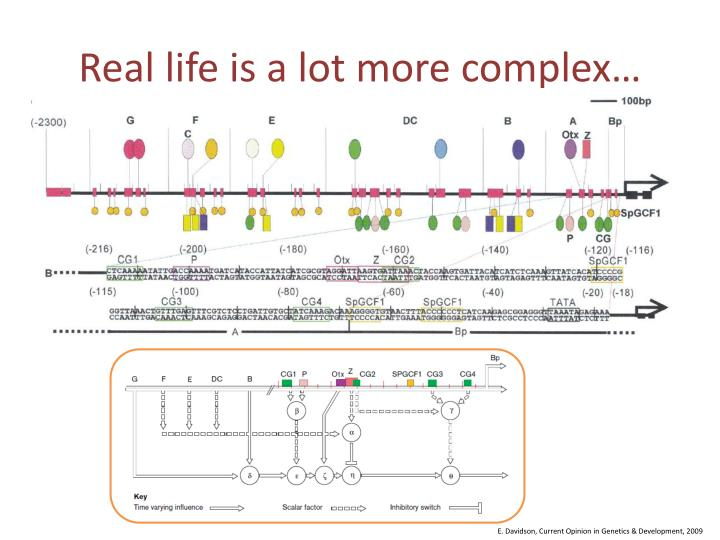 Real life is a lot more complex…