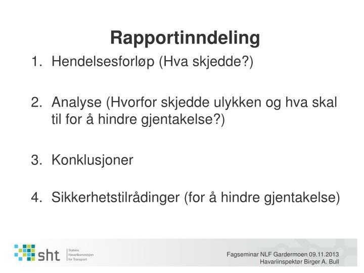 Rapportinndeling