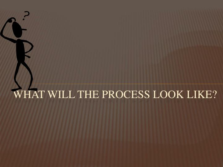 What will the process look like?