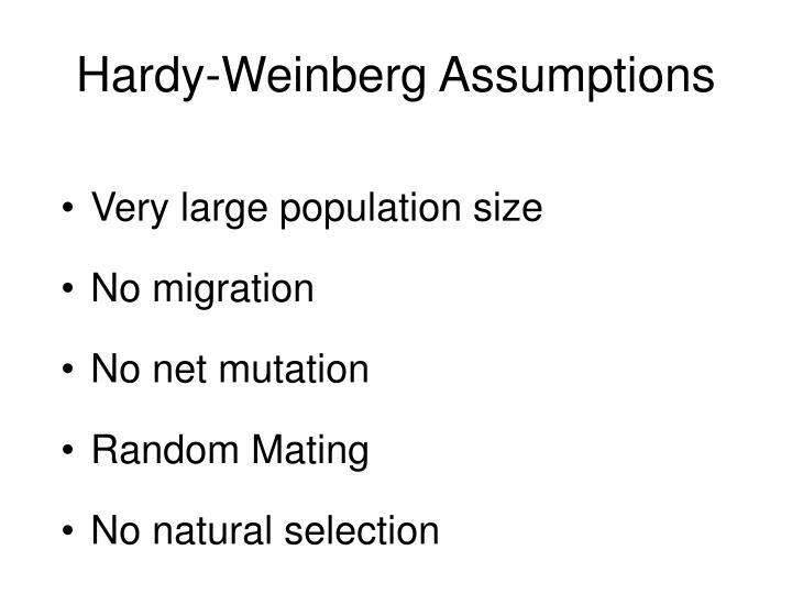 Hardy weinberg assumptions
