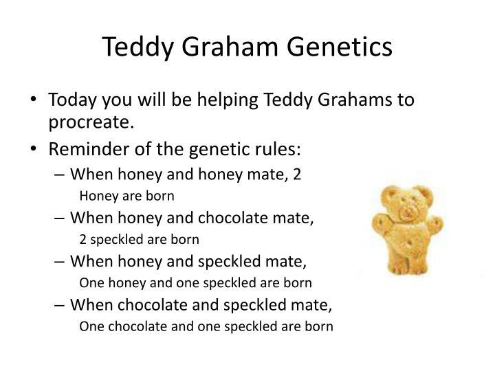 Teddy Graham Genetics