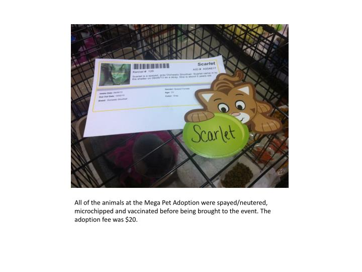 All of the animals at the Mega Pet Adoption were spayed/neutered,