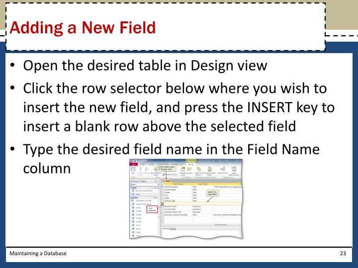 Adding a New Field