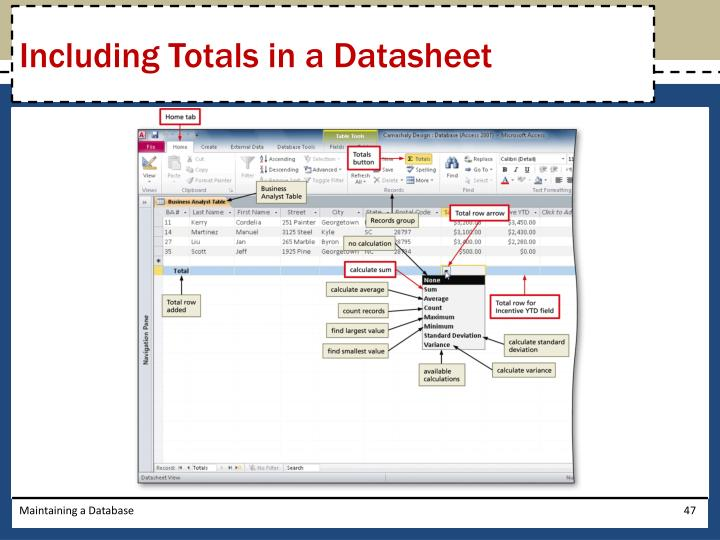 Including Totals in a Datasheet