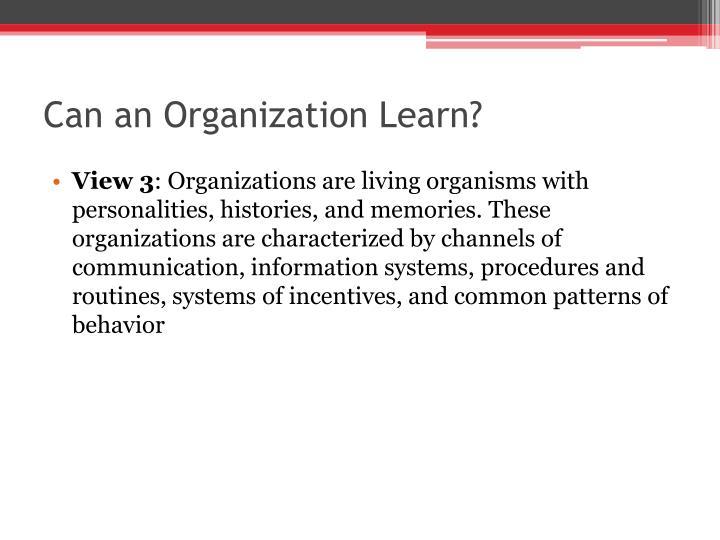 Can an Organization Learn?
