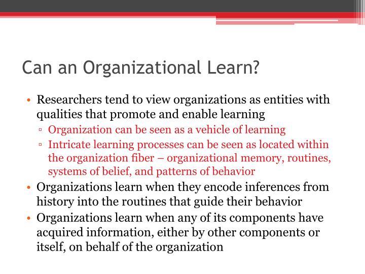 Can an Organizational Learn?