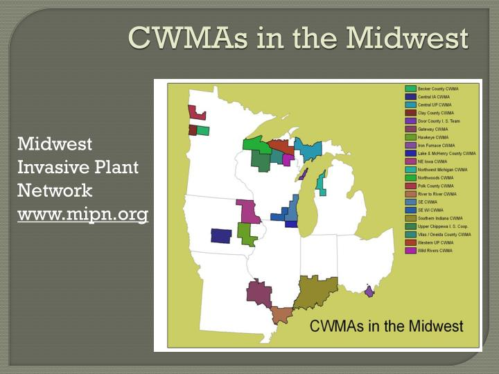 CWMAs in the Midwest