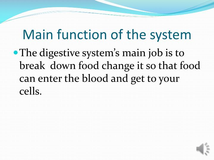 Main function of the system