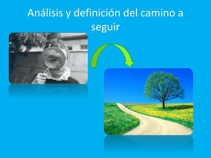 Análisis y definición del camino a seguir