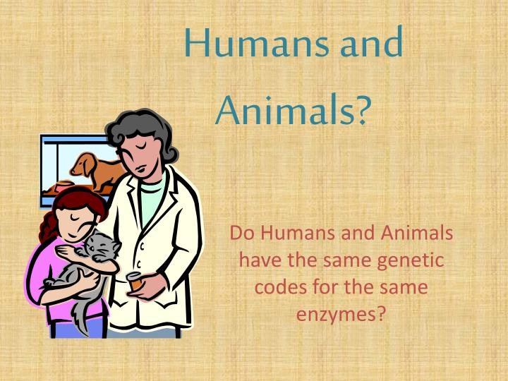 humans and animals n.