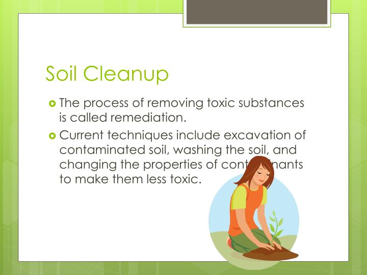 Soil Cleanup
