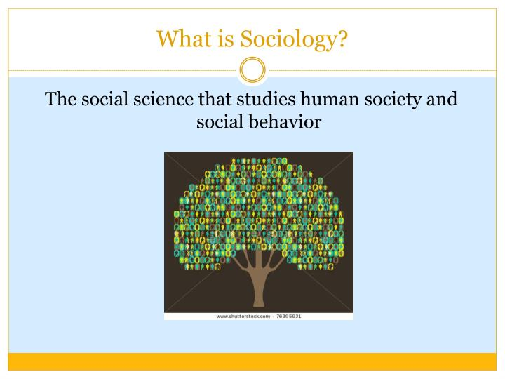 a description of sociology the scientific study of human social activity An area of inquiry is a scientific discipline if its investigators use the scientific method study guides sociology scientific method society and social.