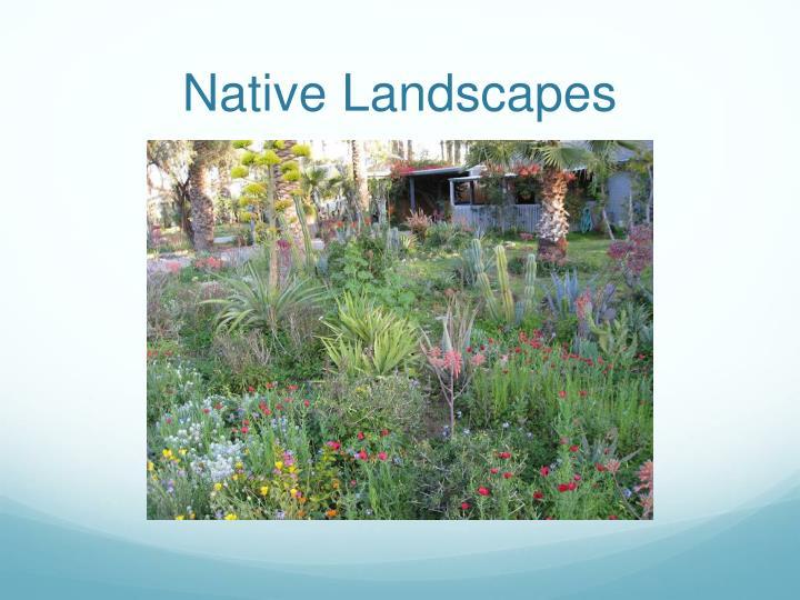 Native Landscapes