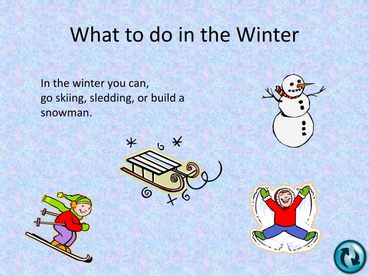 What to do in the Winter