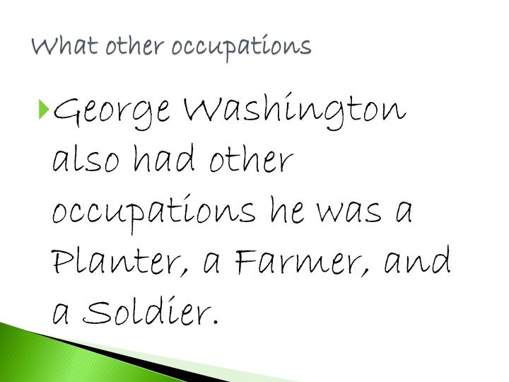 What other occupations