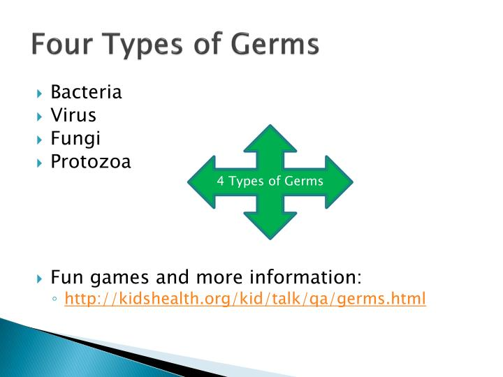 four types of germs