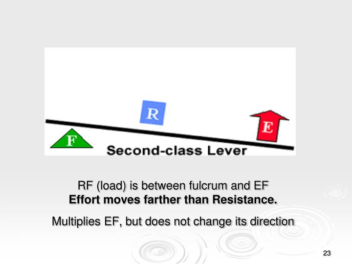 RF (load) is between fulcrum and EF