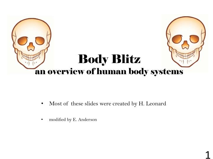 body blitz an overview of human body systems n.
