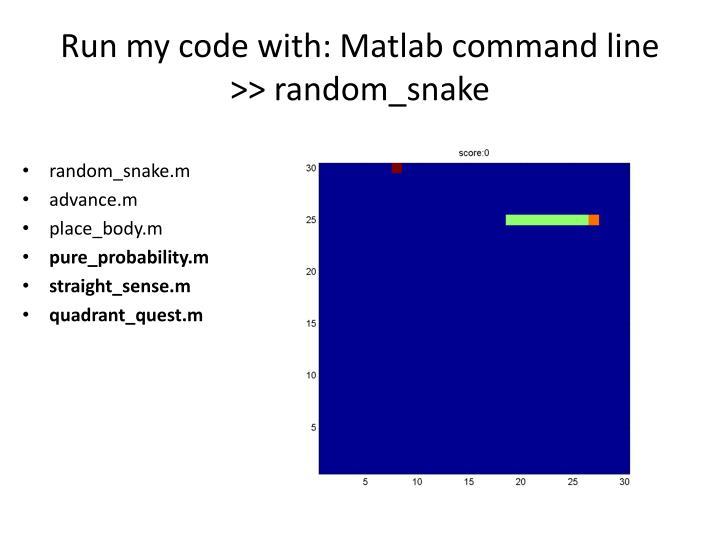Run my code with matlab command line random snake