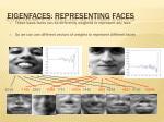 eigenfaces representing faces