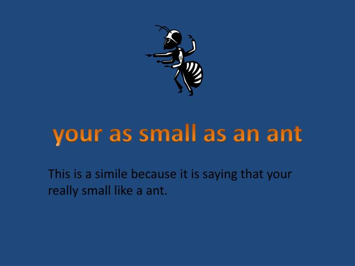 simile for small