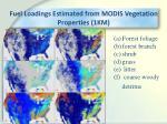 fuel loadings estimated from modis vegetation properties 1km