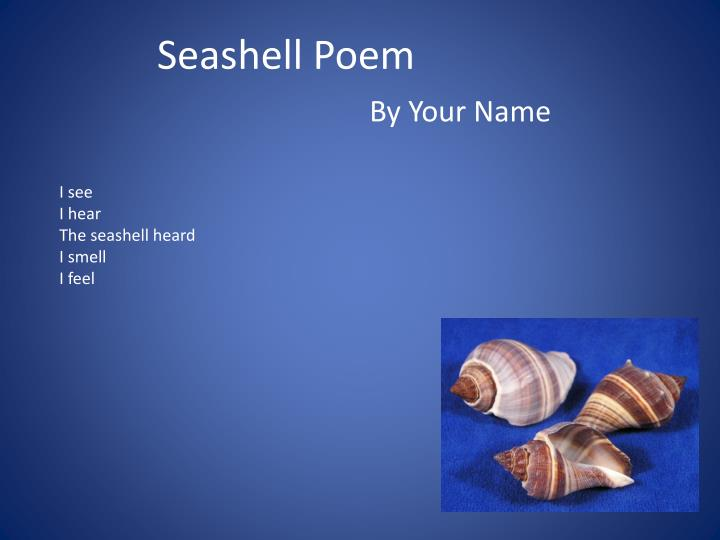 the seashell essay Scrapsayings, at the beach   seashells by the seashore seaside treasures sea, sand and surf she/sally/suzie finds sea shells by the sea shore sink or swim.