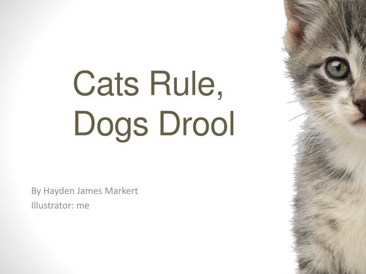 cats rule dogs d rool n.