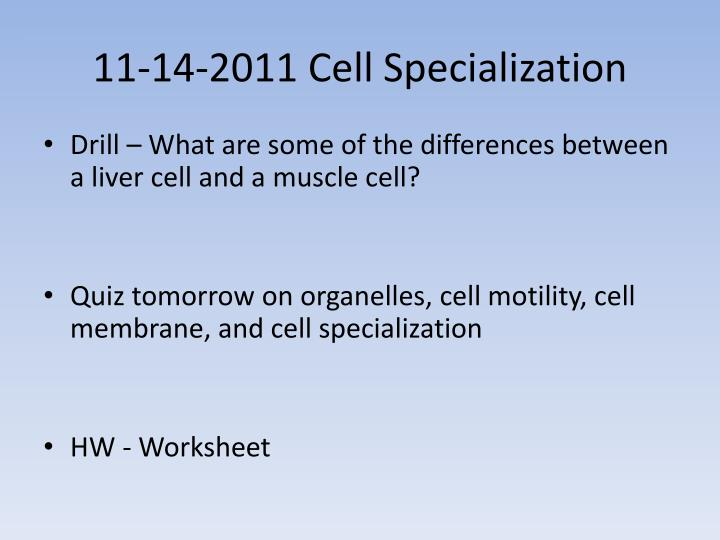PPT 11142011 Cell Specialization PowerPoint Presentation ID – Cell Specialization Worksheet