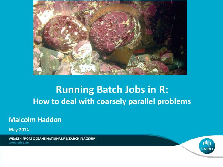 Running batch jobs in r how to deal with coarsely parallel problems