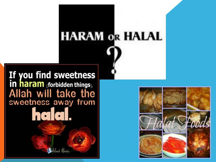 halal and haram issues in food