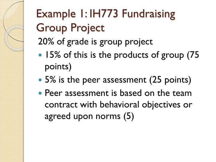 Example 1: IH773 Fundraising Group Project