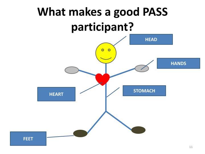 What makes a good PASS participant?