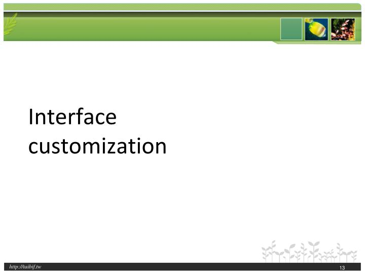 Interface customization
