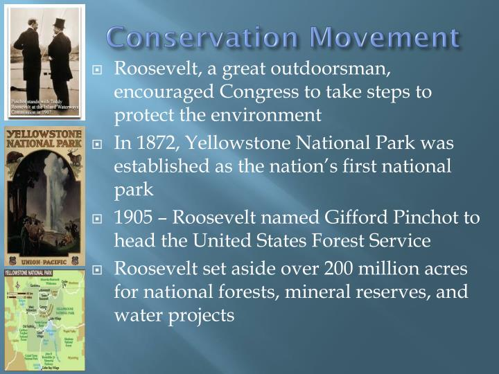 a history of the conservation movements during the progressive era Conservation was the first nationwide political movement in american history to  grapple with environmental problems like waste, pollution, resource exhaustion, .