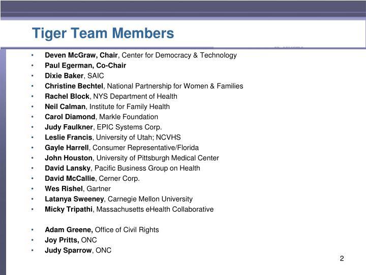 Tiger team members