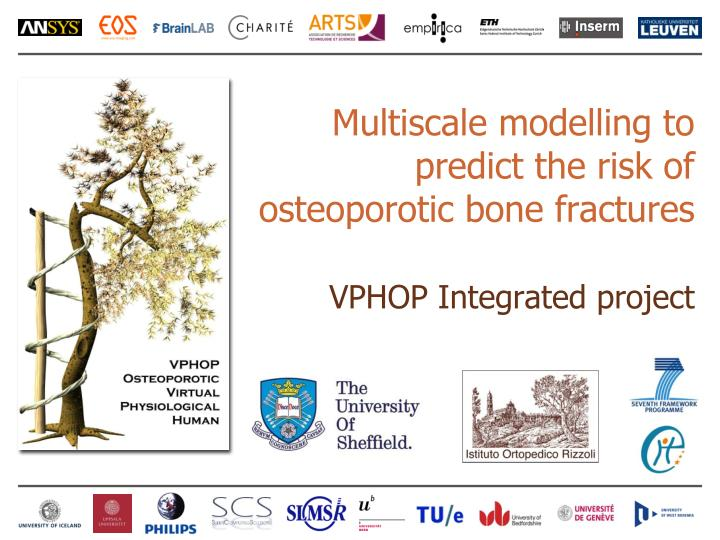 M ultiscale modelling to predict the risk of osteoporotic bone fractures