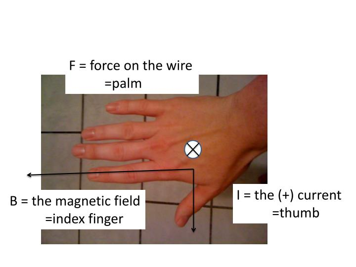 F = force on the wire   	=palm