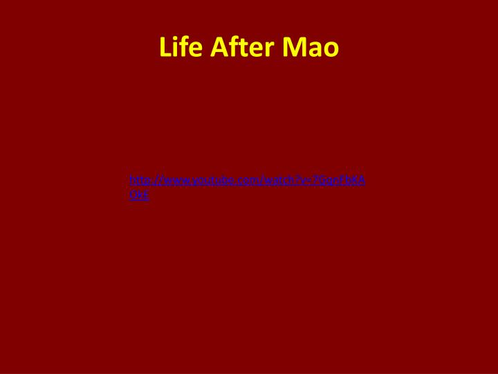 Life After Mao