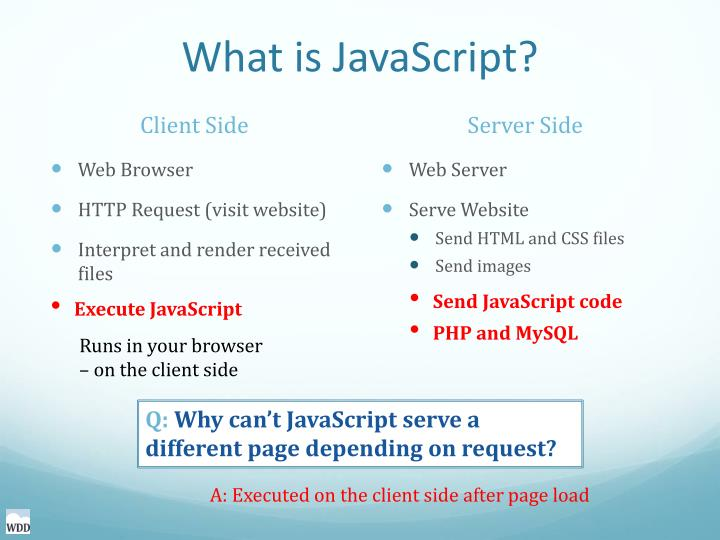 What is JavaScript?