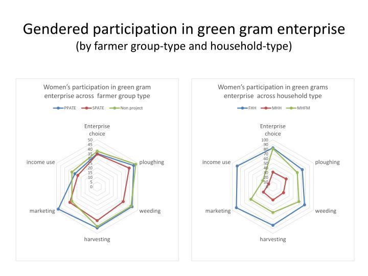 Gendered participation in green gram enterprise