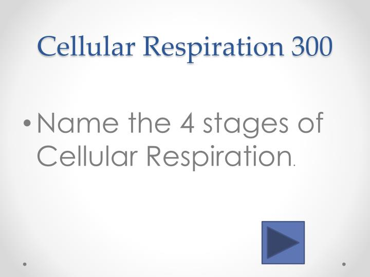 Cellular Respiration 3